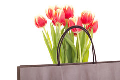 Bunch of tulips with bag Stock Photos