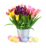 Bunch of  tulips flowers with easter eggs Stock Photography