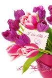 Bunch of tulips with greetings card. Bunch of fresh pink and purple tulips in vase with greetings card Stock Images