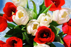 Bunch of tulips Royalty Free Stock Image