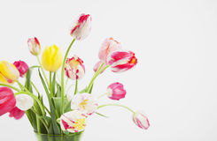 Bunch of tulips in vase Royalty Free Stock Photography