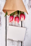 Bunch of tulips on wooden backdrop. How to restore relations Stock Photos