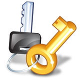Bunch of two keys. Illustration about two needed keys stock illustration