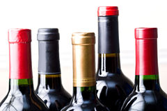 Bunch of unopened  wine bottles  isolated Stock Photos