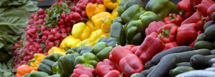 Bunch of Vegtables in Rows Stock Photos