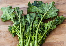 Bunch of vibrant green turnip cime di rapa. Stock Photography
