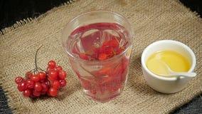 Bunch of viburnum falls into a glass of viburnum tea stock footage