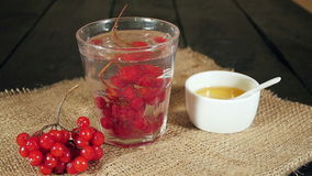 Bunch of viburnum falls into a glass of viburnum tea stock video footage