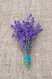 Bunch of violet lavender tied with string Stock Photo