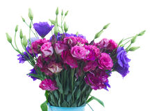 Bunch  of  violet and mauve eustoma flowers Royalty Free Stock Photography
