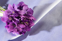 Bunch of violets leaning over a purple fabric. Dark purple on light purple Royalty Free Stock Image