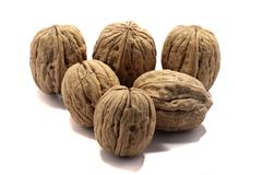 Bunch of walnuts. Close view detail of  some walnuts   on a white background stock photo