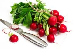 Bunch of washed fresh red radish, isolated on white background Stock Image