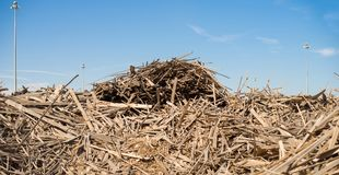 A bunch of waste from wood cutting boards. royalty free stock photography