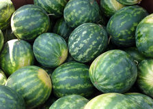 Bunch of Watermelons at a Farmers' Market Stock Photography