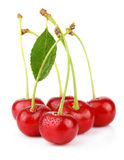 Bunch of wet ripe cherry berries with green leaf. On white Stock Image