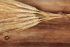 Bunch of wheat ears Stock Images