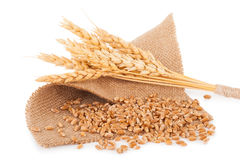 Bunch of wheat and ears on sacking Stock Images