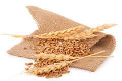 Bunch of wheat and ears on sacking Royalty Free Stock Image