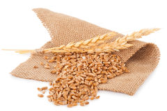 Bunch of wheat and ears on sacking Stock Image