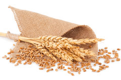 Bunch of wheat and ears on sacking. On white background Stock Photo