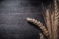 Bunch of wheat and rye ears on wooden board Royalty Free Stock Images