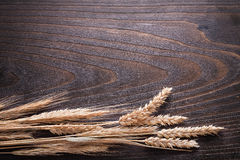 Bunch of wheat rye ears on wooden vintage board Royalty Free Stock Images