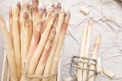 Bunch of white asparagus in box, on crumpled paper Royalty Free Stock Photos