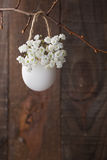 Bunch of of white baby's breath flowers Royalty Free Stock Images