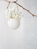 Bunch of of white baby's breath flowers. Stock Photo