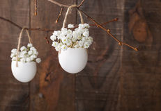 Bunch of of white baby's breath flowers. Royalty Free Stock Images