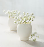 Bunch of white baby's breath flowers. royalty free stock photos