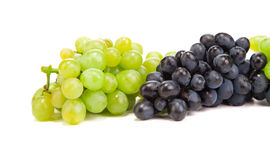 Bunch of white and black grapes. Royalty Free Stock Photo