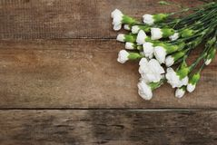Bunch White Carnation Flower Bouquet Arrangement composition Isolated Rustic Wooden Background. Bunch White Carnation Flower Bouquet Arrangement composition Royalty Free Stock Images