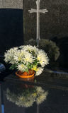 Bunch of white Chrysanthemum in flowerpot on grave Stock Photo