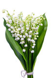 Bunch of white flowers Stock Photo