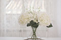 A bunch of white flowers in a glass jar. On a white background Stock Image