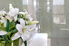 Bunch of white flowers on the glass of a room with blurred background. Close up of a white flowers in the glass top of a white table or worktop and inside of a stock image