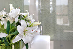 Bunch of white flowers on the glass of a room with blurred backg. Close up of a white flowers in the glass top of a white table or worktop and inside of a room royalty free stock photos