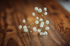 Bunch of white fowers gypsophila on a wooden background, Royalty Free Stock Photo