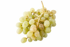 A bunch of white grape Royalty Free Stock Photo