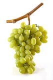 Bunch of white grapes. On white background Stock Photo