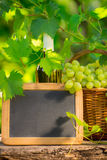 Bunch of white grapes in basket and blackboard Stock Photo