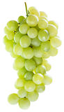 Bunch of white grapes. Stock Image