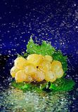 Bunch of white grapes with green leaves and water Stock Photos