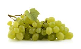 Bunch of white grapes isolated on white with leaf Stock Images