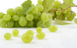 Bunch of white grapes isolated on white with vine leaves branch Royalty Free Stock Photos