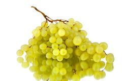 Bunch of white grapes on a white mirror background with reflection isolated close up royalty free stock image