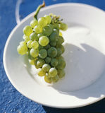 Bunch of white grapes on a plate. Food, gastronomy, cuisine,cookery Royalty Free Stock Photos