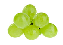 Bunch of white grapes with water drops Stock Photos